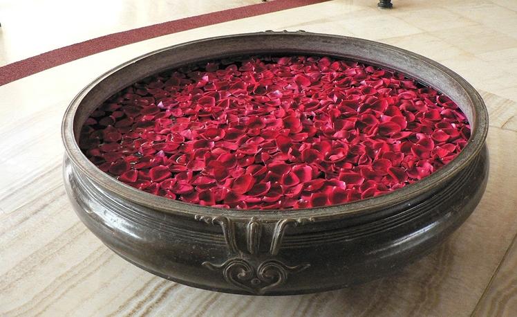 7. Rose Petals